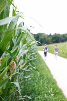 2011 ~ Summer promenade
