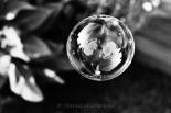 2011 ~ Reflection Bubble ~